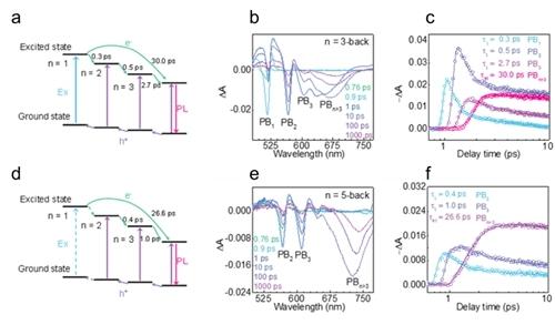 这一结果可促进二维层状钙钛矿薄膜在太阳能转换和光电探测等领域的